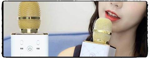 micro karaoke gia re